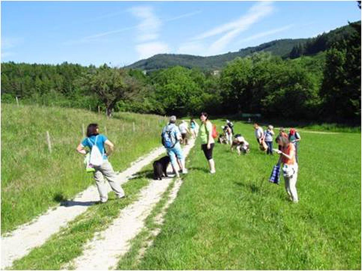 Kräuterwanderung in Kreisbach